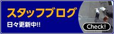 スタッフブログ 日々更新中!!