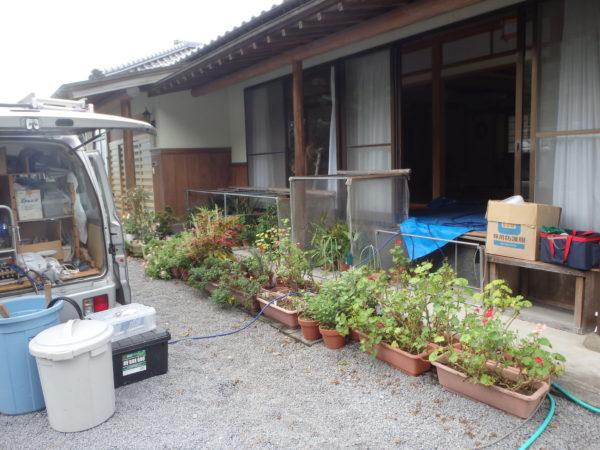 予防消毒を豊後高田市でのサムネイル